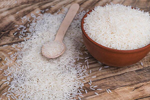 What is transgenic rice