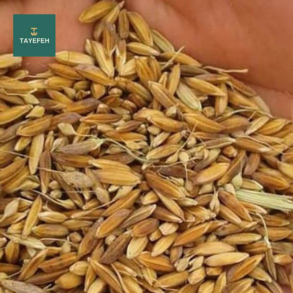 What is the time and method of separating the rice husk