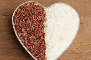 گیاه برنج
